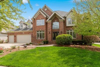 Batavia Single Family Home For Sale: 2474 Kane Lane