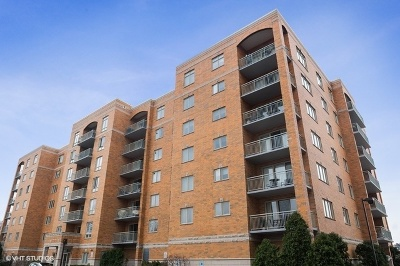 Niles Condo/Townhouse For Sale: 6807 North Milwaukee Avenue #211