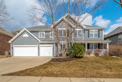 Palatine Single Family Home For Sale: 878 West Lukas Avenue