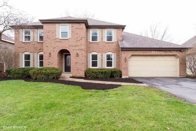 Naperville Single Family Home For Sale: 1113 Colgate Drive
