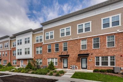 Woodridge Condo/Townhouse For Sale: 6316 Main Street