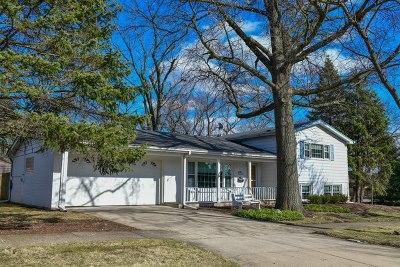 Elmhurst Single Family Home For Sale: 907 South Poplar Avenue