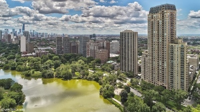 Chicago Condo/Townhouse For Sale: 2550 North Lakeview Avenue #N1803