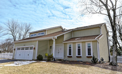 Naperville Single Family Home For Sale: 1254 Jasmine Court