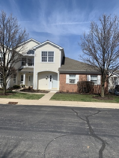 Joliet Condo/Townhouse Re-Activated: 2963 Covered Bridge Way #2963