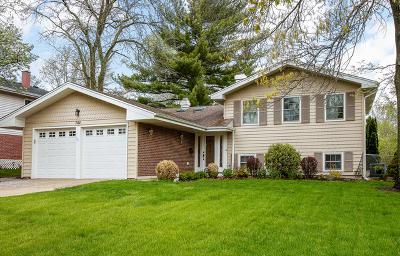 Glen Ellyn Single Family Home For Sale: 21w744 Buckingham Road