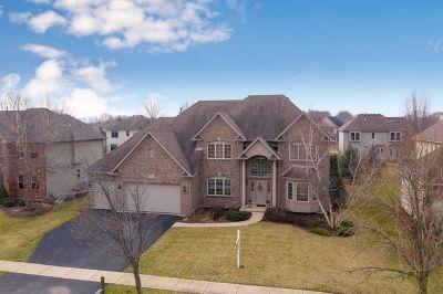 Oswego Single Family Home For Sale: 143 Pineridge Drive South