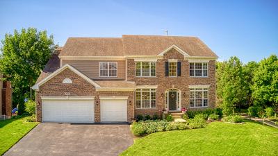 Batavia Single Family Home New: 926 Tierney Lane