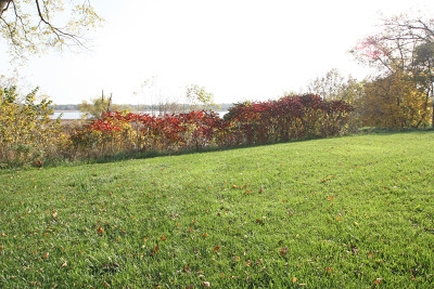 Spring Grove Residential Lots & Land For Sale: 38415 North Primrose Path