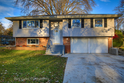 Schaumburg Single Family Home For Sale: 702 Dartmouth Lane