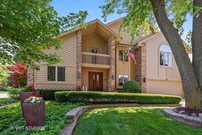 Arlington Single Family Home For Sale: 215 East Ryan Court