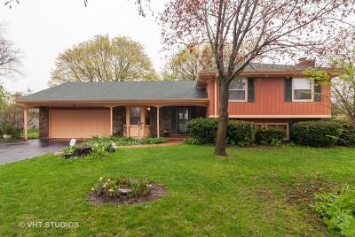 Batavia Single Family Home For Sale: 806 Hamlet Street