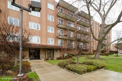 Niles Condo/Townhouse For Sale: 8100 West Foster Lane #204