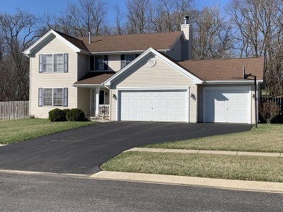 Ogle County Single Family Home For Sale: 1175 Old Hunter Run