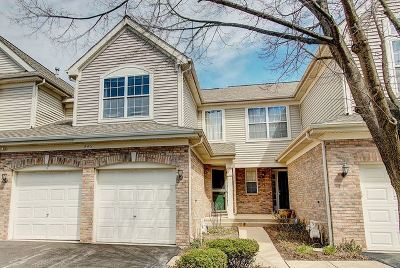 Lisle Condo/Townhouse New: 843 McKenzie Station Drive #843
