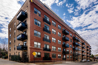 Chicago Condo/Townhouse New: 1735 West Diversey Parkway #516