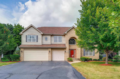 Hoffman Estates Single Family Home For Sale: 5724 Red Oak Drive