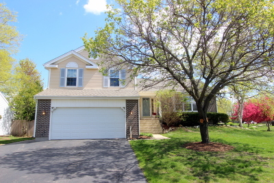 Crystal Lake Single Family Home For Sale: 1168 Westport Ridge