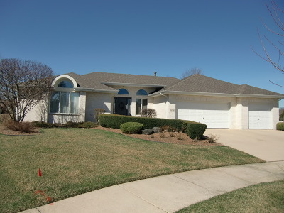Orland Park Single Family Home For Sale: 18014 Crooked Creek Court