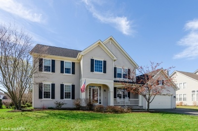 West Dundee Single Family Home For Sale: 1129 Angle Tarn