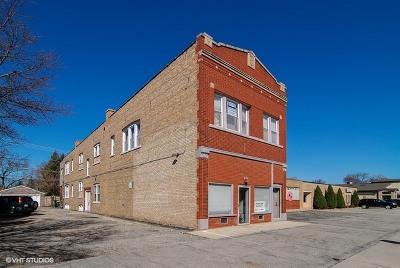 La Grange Park Condo/Townhouse For Sale: 1120 Maple Avenue #2E