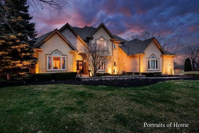 Naperville Single Family Home For Sale: 10841 Royal Porthcawl Drive