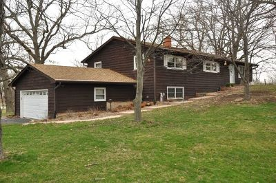 Elgin Single Family Home For Sale: 37w840 Big Timber Road