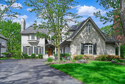 Hinsdale Single Family Home For Sale: 5514 South Park Avenue