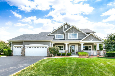 Plainfield Single Family Home For Sale: 12843 Scoter Court