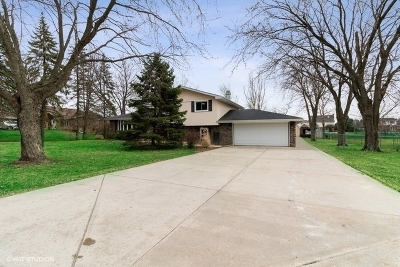 New Lenox Single Family Home For Sale: 1806 Tomahawk Rdg