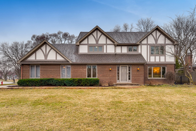 Hoffman Estates Single Family Home For Sale: 350 Castlewood Court