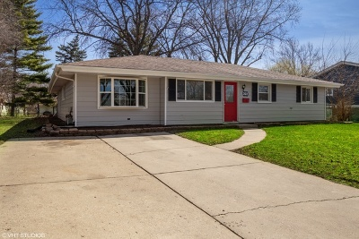 Schaumburg Single Family Home For Sale: 323 South Springinsguth Road