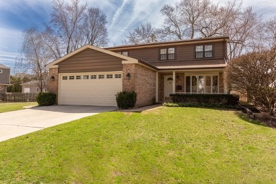 Arlington Single Family Home For Sale: 354 South Carlyle Place