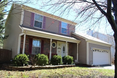 Carol Stream Single Family Home For Sale: 999 Split Rail Drive