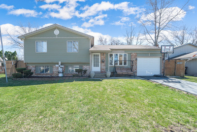 Oak Forest Single Family Home For Sale: 5185 Newport Drive