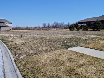 Frankfort Residential Lots & Land For Sale: 20522 Magnolia Court
