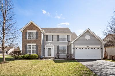 Sugar Grove Single Family Home For Sale: 293 Hampton Road
