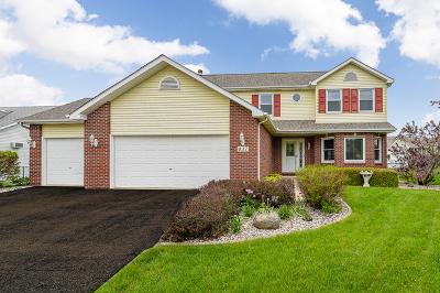Oswego Single Family Home For Sale: 437 Badger Lane