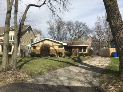 Hinsdale Single Family Home For Sale: 833 South Jackson Street