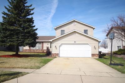 Glendale Heights Single Family Home For Sale: 1946 Slayton Lane