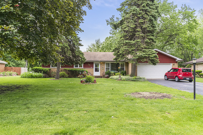 Bensenville Single Family Home For Sale: 803 South Center Street