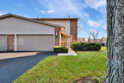Oak Brook Condo/Townhouse Contingent: 19w235 Ginger Brook Drive