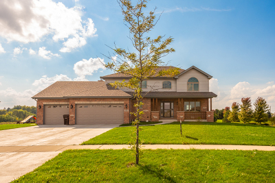New Lenox Single Family Home For Sale: 2212 Alta Vista Drive