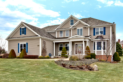 Spring Grove Single Family Home For Sale: 8219 Country Shire Lane
