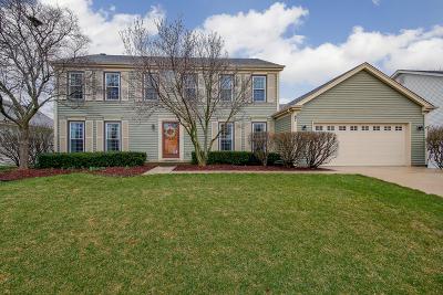Wheaton Single Family Home For Sale: 87 Venetian Way Circle