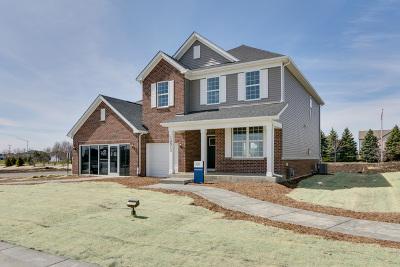 Plainfield Single Family Home For Sale: 24731 West Prairie Grove Drive