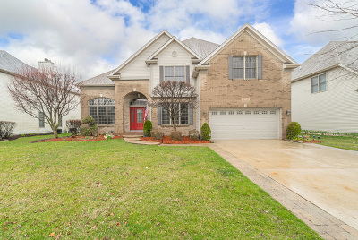 Plainfield Single Family Home For Sale: 12200 Winterberry Lane