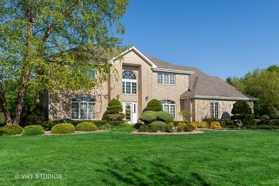 Homer Glen Single Family Home For Sale: 13818 Prairie Hill Drive