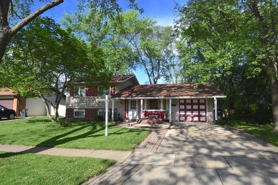 Hoffman Estates Single Family Home For Sale: 485 Aberdeen Street
