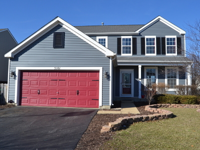 Plainfield Single Family Home For Sale: 5101 Montauk Drive